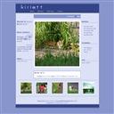 Kiriott -For Dear Stray Cats-